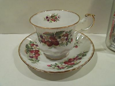 Nice Vintage Antique Queens Rosina Tea Cup And Saucer Blackberry Floral,england