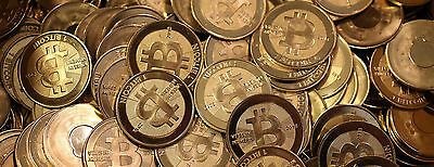 0.01 Bitcoin $19.99 Direct to your Wallet Fast Transfer Quickly