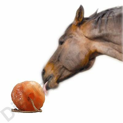 Himalayan Crystal Salt Lick For Horses. Mineral. Equine Use Only. Hanging Rope