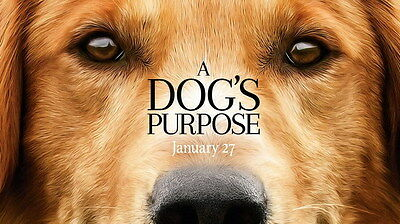 "002 A Dogs Purpose - Adventure Comedy 2017 USA Movie 24""x14"" Poster"