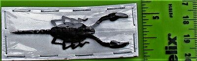 Lot of 20 Unique Small Black Javan Scorpion FAST SHIP FROM USA