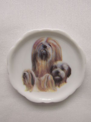 Lhasa Apso Dog 3 View Porcelain Plate Magnet Fired Decal- 14
