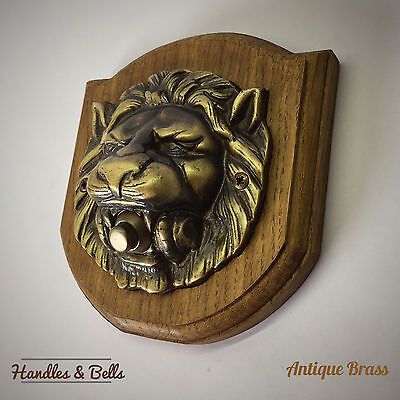 Oak Plinth and Large Solid Brass Lion Head Bell Push Doorbell Surface Mounted