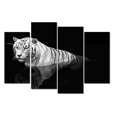 Photo Painting Picture Canvas Print Home Wall Art Decor Tiger Black White Framed