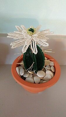 Handmade french beaded Flower Cactus Cacti plant with white flower in Clay pot