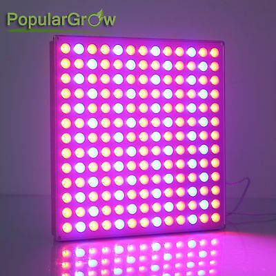 45w Led Cultivo Plantas Interior Hidroponia Plantas grow light panel seed bloom
