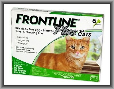 Frontline Plus Flea & Tick Control for Cats, Kittens Over 1.5 lbs, 6 Doses Box !