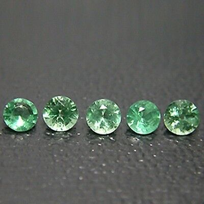 1.35 Ct Attractive Fine Quality Top Luster Natural Green Apatite 5Pcs *GF03