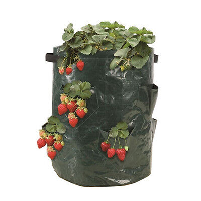 Strawberry Planter Vertical Garden Herbs Wall Hanging Seedling Planting Bag