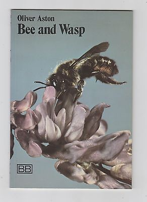 Bee and Wasp Paperback Book by Oliver Aston