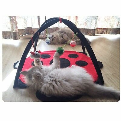 Pet Cat Toys Activity Tent Exercise Play Folding Soft Bed Mat With Hanging Toy