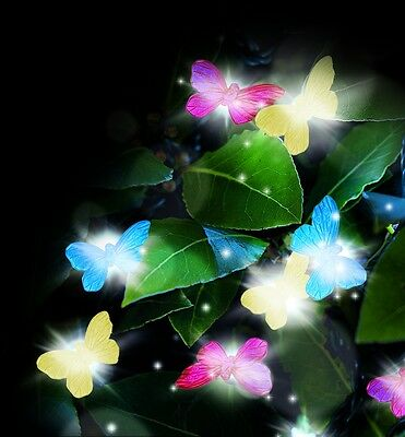 Cole & Bright Garden String LED Lights, Butterfly Design, 20pcs, Solar Recharge
