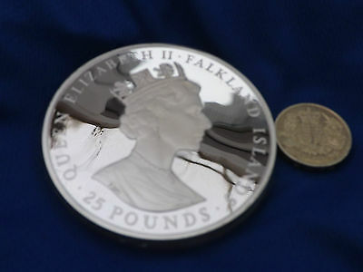 Falkland Islands 1986 £25 Pounds Self Sufficiency 150 grammes Silver Proof coin