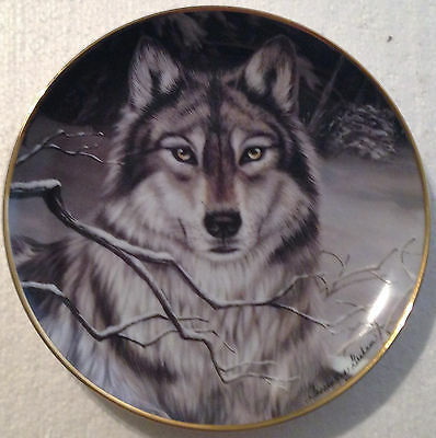 Collectable Wolf Plate 8 1/4 Inches - Call Of The Wild - The Franklin Mint