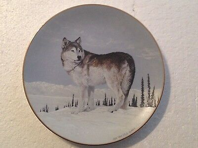 Collectable Wolf Plate 8 1/4 Inches - Far Country Crossing - Princeton Gallery