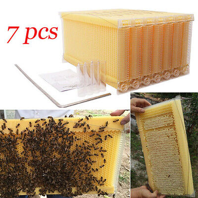 7PCS Beekeeping Auto Flow Honey Hive Beehive Frames for Langstroth Beehive Box