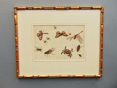 19th Century Chinese Watercolour Painting on Pith Insects