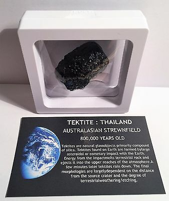 """RARE"" 25.3 Gram TEKTITE Museum Quality with stand and label"