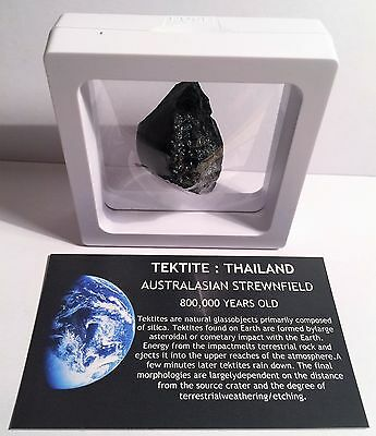 """RARE"" 22.1 Gram TEKTITE Museum Quality with stand and label"