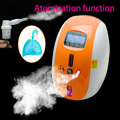 Oxygen Concentrator Generator with remote control nebulizer Home Care Machine 2L