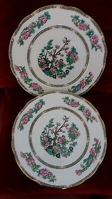 Duchess Indian Tree dinner plates 9.5 inches/24 cm x 2