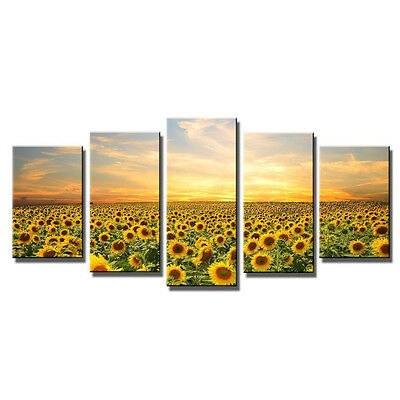 Canvas Print Painting Picture Home Decor Wall Art Sunflowers Landscape Framed