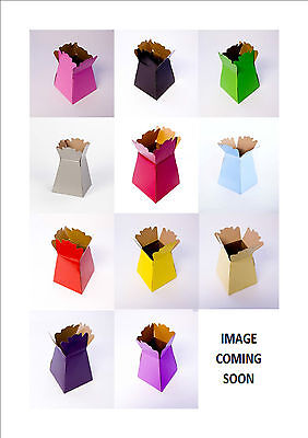 Living Flower Vases*Euro Transporter Boxes In 12 Colours*Box Of 25 Oasis®