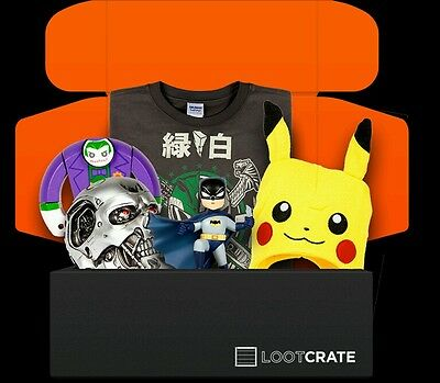 Loot Crate Bulk Lot of Over 2 Years of Loot Collecting!