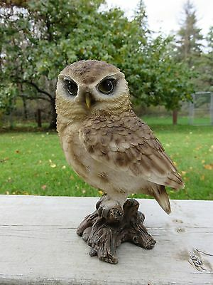 """6"""" Brown Owl Figurine On Tree Stump Hooter Statue Wise Old Owl Ornament Bird New"""