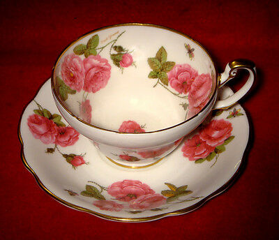 "FOLEY BONE CHINA CUP & SAUCER ""CENTURY ROSE"" SIGNED by ARTIST GOLD TRIMMED"