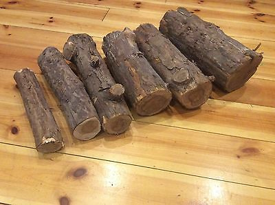 High quality British Wood turning Yew logs various sizes tight grain blanks log