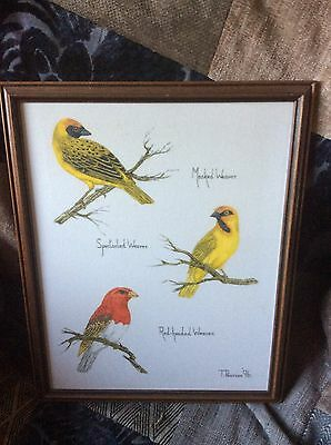 Framed Painting On Fabric Of A Variety Of Birds