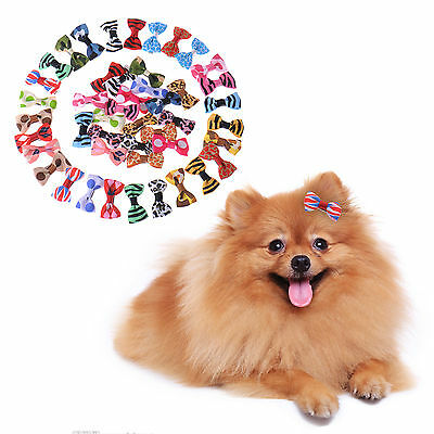 10/20/50/100Pcs Pet Grooming Ribbon Cat Dog Hair Bows w/Rubber Bands Accessories