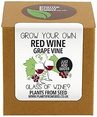 Plants From Seed  Grow Your Own Red Grape Vine Kit