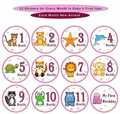 """25 Pack of 4"""" Baby Monthly Stickers with Milestone & Holiday (Pink)"""