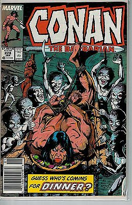 Conan The Barbarian - 228 - Marvel - January 1990