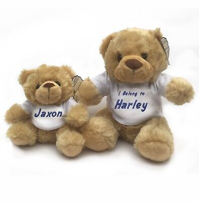 Personalised Embroidered Teddy Bear in a T-Shirt With Name