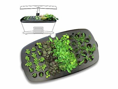 AeroGarden Seed Starter Kit w/ Plastic Tray to Grow Seedling Garden Germination