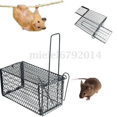 2x Large Metal Cage Trap Rat Rodent Rabbit Animal Mouse Catcher Indoor Outdoor