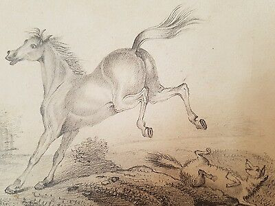 Drawing of horse and dog dated 1826 and signed