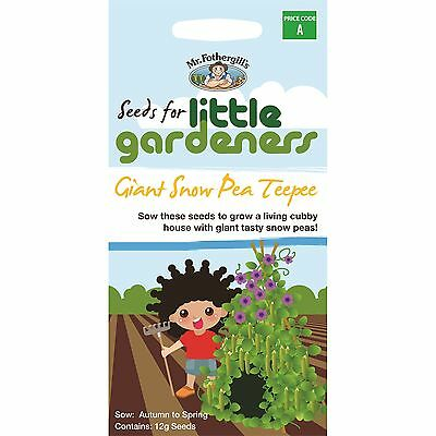 Mr Fothergills LITTLE GARDENERS GIANT SNOW PEA TEEPEE SEEDS for Cubby House 12g