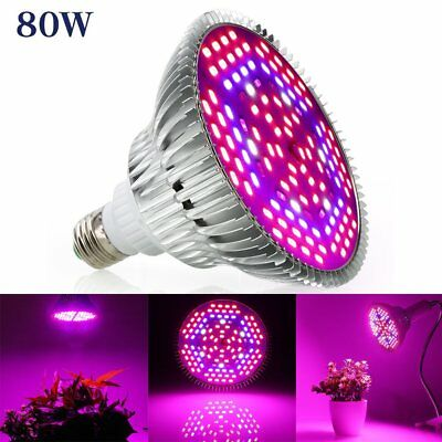 Full Spectrum 80W E27 LED Grow Light Red Blue Lampe Panel Pflanze Blumen Gemüse