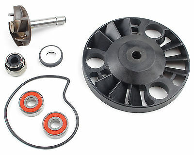 Water Pump Set - Gilera Runner VX VXR DNA - Piaggio Hexagon Beverly X9 0070