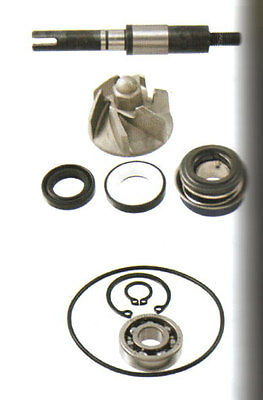 Water Pump Set - Honda SH 125 +  150 CHIOCCIOLA 125 +150  0190