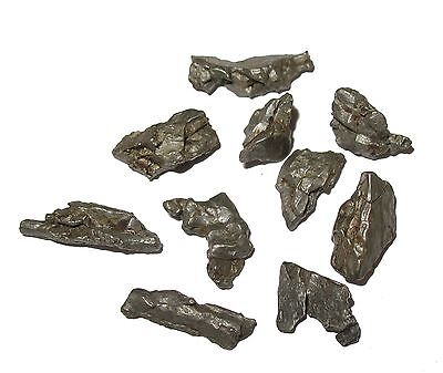 Campo del Cielo iron meteorite fragment in display gem jar small size micromount