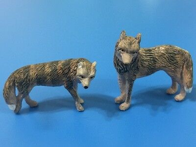 Noah's Pals Animal figure 1/24 Two Coyote Chad Chana pair in box