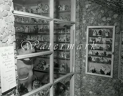 "1957 Harry's Dog House Centerville Iowa Photo NEGATIVES (2) 4""×5"" Canine Museum"