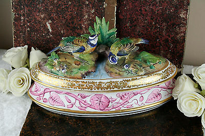 Rare 1900 Gorgeous French antique porcelain majolica Birds family box marked