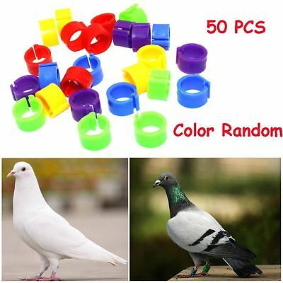 50 PCS Random Chicken Colorful Clip Poultry Leg Band Parrot Pigeon Foot Rings