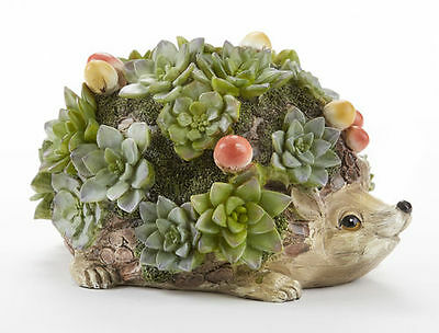 Hedgehog Figurine Whimsical Garden Patio, Porch Decor Adorned with Succulents
